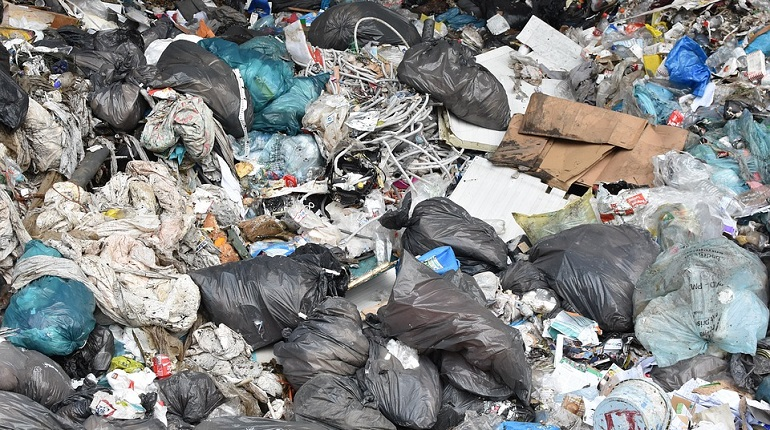 Смольный отчитался о работе экологических служб. Фото: pixabay.com