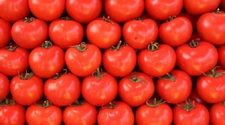 Фармацевты прописали бесплодным мужчинам красные таблетки из помидоров