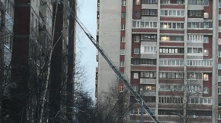Пожар на Шлиссельбургсом. Фото: vk.com/spb_today