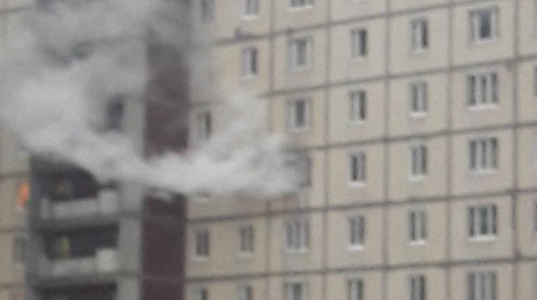 Пожар на Шлиссельбургском, 2. Фото: vk.com/spb_today