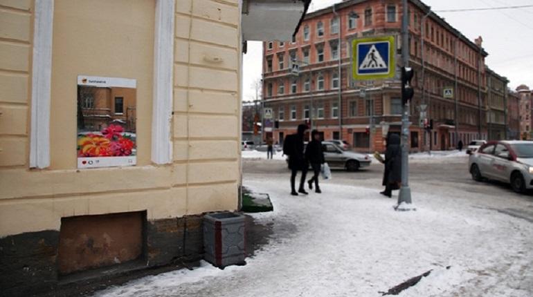 В центре Петербурга появился нарисованный огромный букет