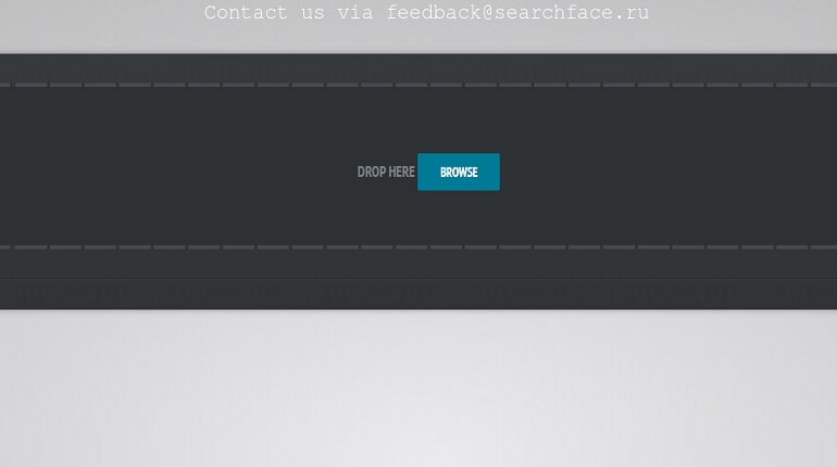 Сайт SearchFace. Фото: http://searchface.ru/
