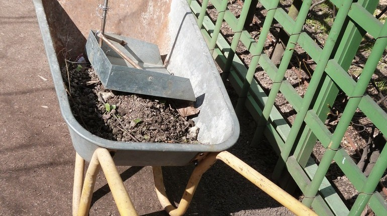 В Петербурге продолжается месячная уборка