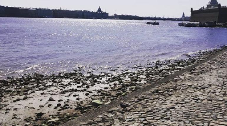 Ливень поднял уровень воды в Неве до опасных значений