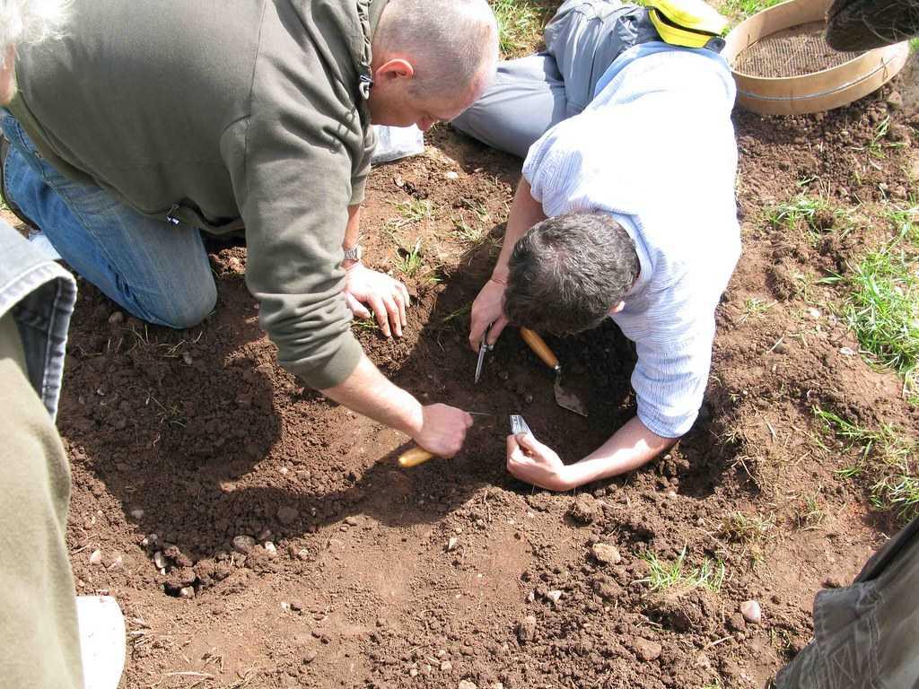 На юге Чили найдены древнейшие в Америке следы человека