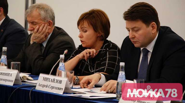 Вице-губернатор Петербурга Анна Митянина. Фото: Мойка78