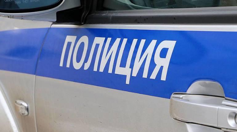 Житель Сланцев залез на капот полицейской машины и поплатился