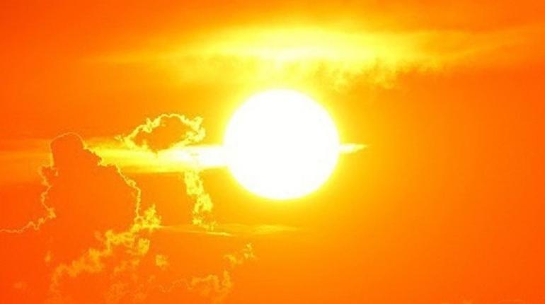 В начале недели в Ленобласти потеплеет