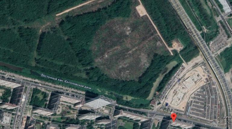 Парк в Приморском районе разобьет фирма, ремонтировавшая Муринский