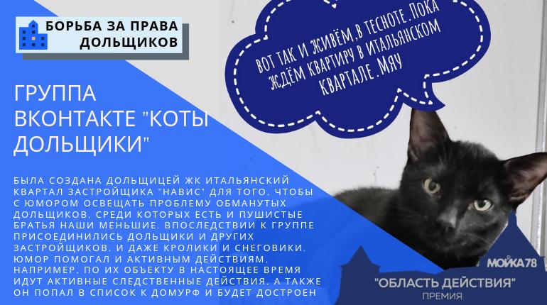 «Коты дольщики» — номинанты «Борьба за права дольщиков» премии «Область действия»