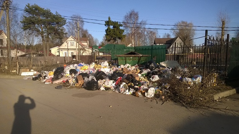 Жители Всеволожска рассказывают, что мусор в городе не вывозят уже несколько недель. Фото: vk.com/typical_vsevolozhsk