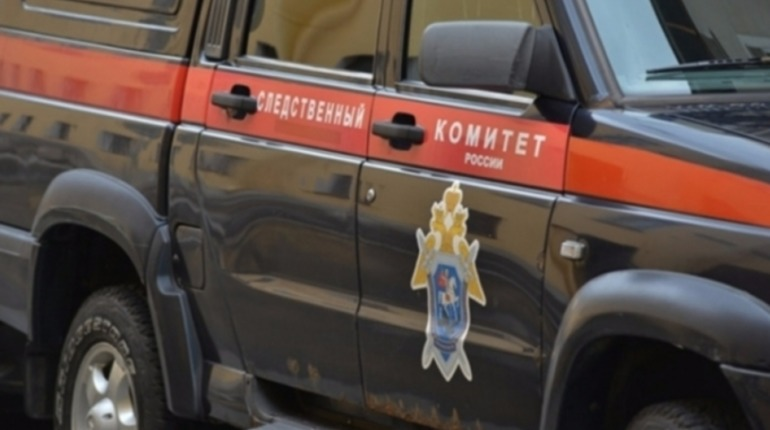 После драки в Красногорске следствие предъявило обвинение в убийстве