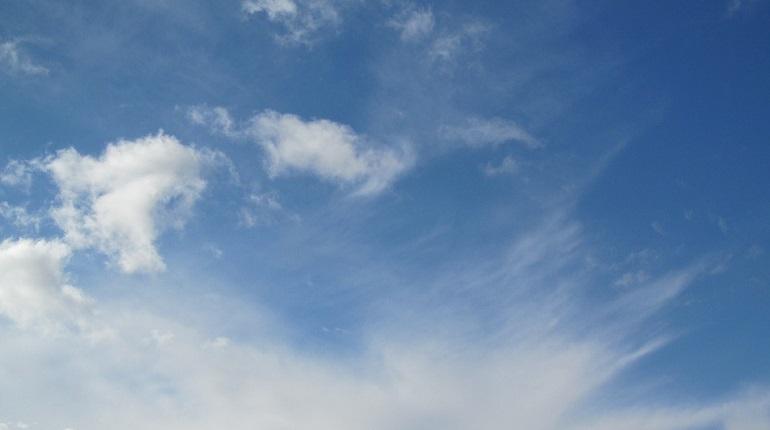 В Ленобласть во вторник придет весенняя погода