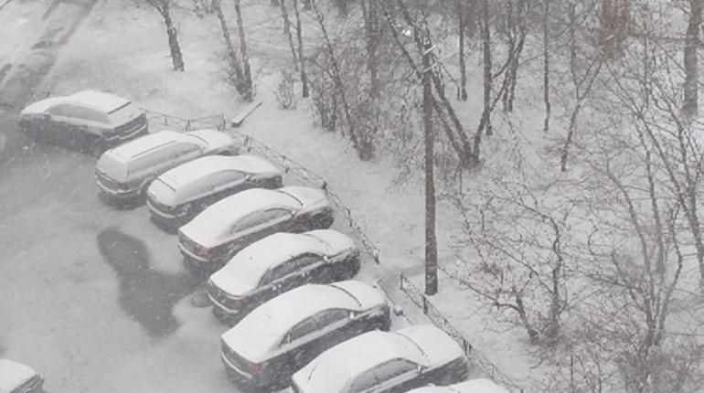 Леус пообещал Петербургу снег и высокое давление