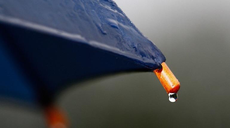 В Ленобласти обещают дождь и 22 градуса тепла