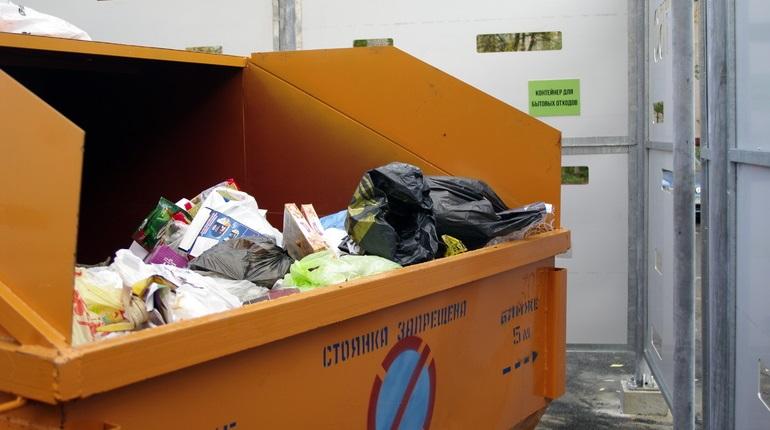 Петербург и Ленобласть создали единого мусорного оператора