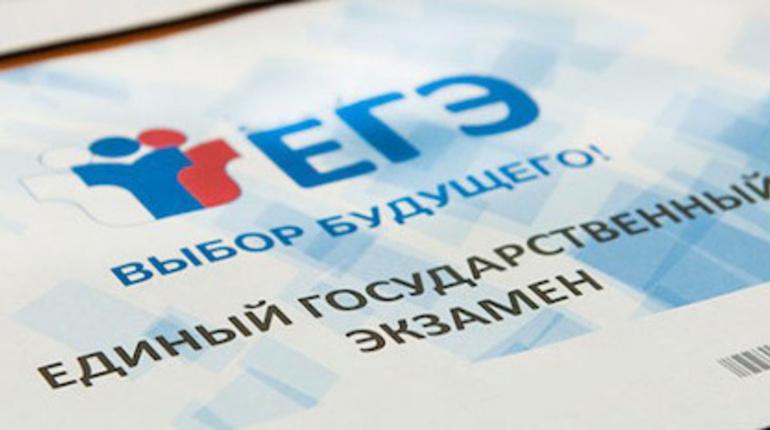 Более 500 школьников в Петербурге получили максимальный балл на ЕГЭ