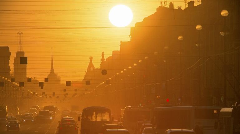 Петербуржцев ждет жаркое воскресенье