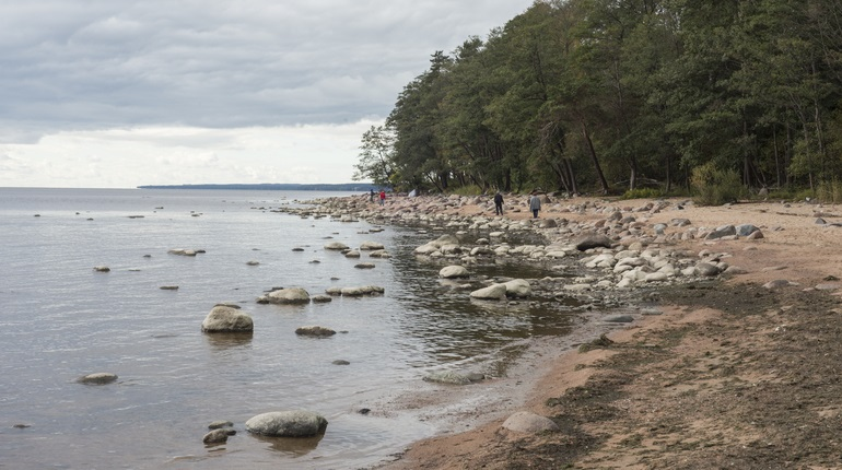 Финляндия вложит деньги на строительство парка «Кюренниеми» в Ленобласти