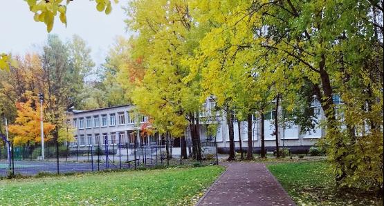 Школа №72 Петербурга нарушила закон о госзакупках