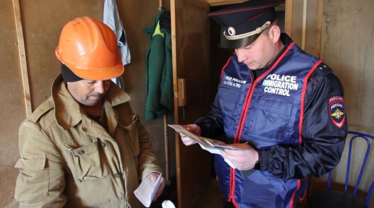 Полиция поймала 39 мигрантов-нарушителей в Гатчине