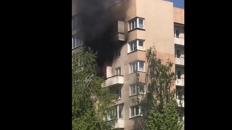 Пожар на улице Кораблестроителей. Фото: скриншот