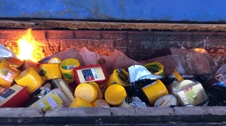 Россельхознадзор показал видео сжигания 60 кг европейских сыров