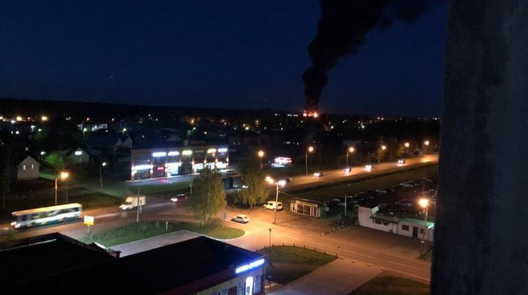 Пожар в поселке имени Свердлова. Фото: vk.com/spb_today