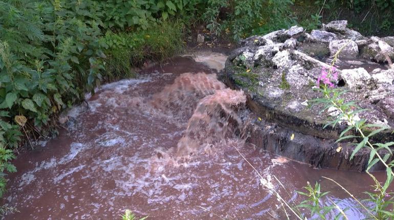 «Водоканал Рощино» заплатит 11,5 млн за загрязнение ручья Безымянный