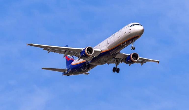 «Аэрофлот» предложил создать компанию для отлова птиц вблизи аэропортов