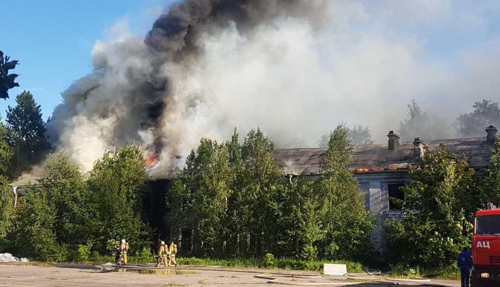 Пожар около КАД. Фото: ДТП и ЧП Санкт-Петербург