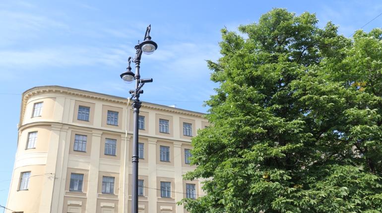 Жилой квартал рядом с Юнтоловским заказником осветят 704 новых фонаря