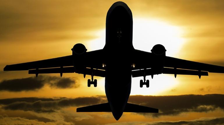 Двигатель вспыхнул: самолет экстренно сел в Подмосковье