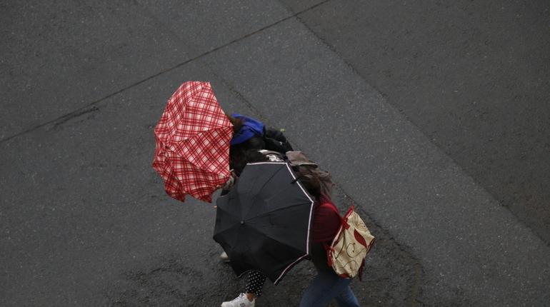 МЧС предупредило петербуржцев о штормовом ветре и дожде в понедельник