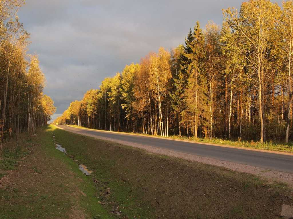 В европейской части России ожидают тепло до +24