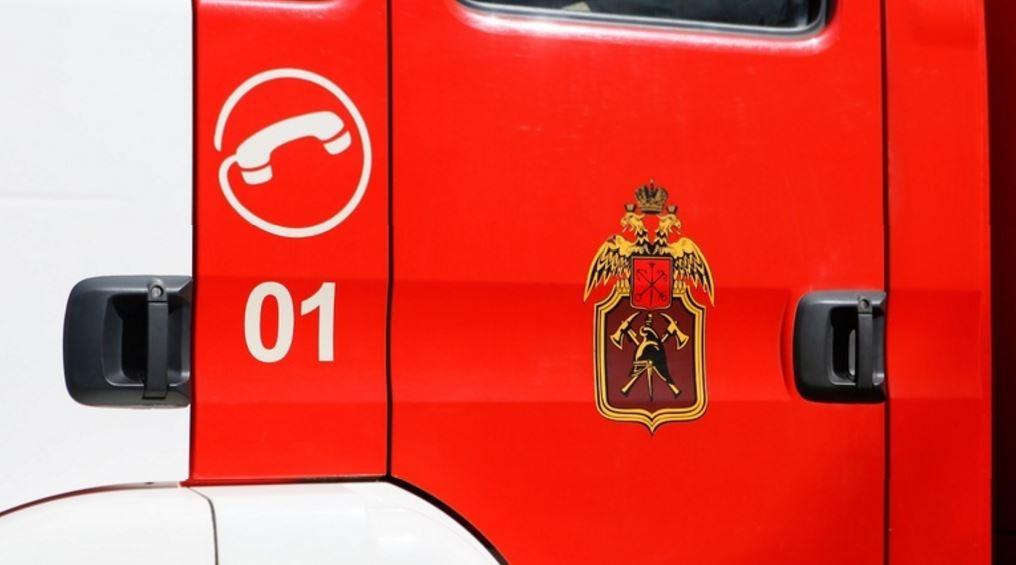 Пожарные потушили два дачных дома в Ленобласти