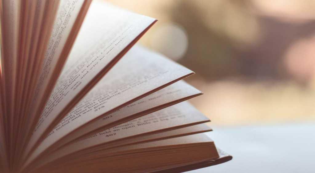 Регулярное чтение развивает эмоциональный интеллект