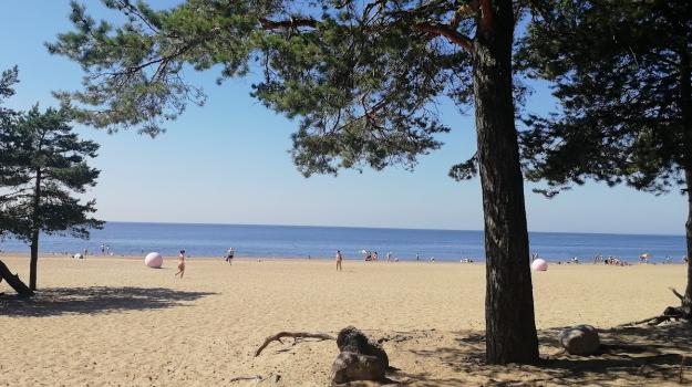 Петербуржцам разрешили купаться только на двух пляжах