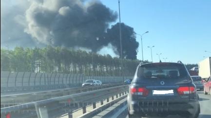 Пользователи сети обругали горящие покрышки в Колтушах и тех, кто их поджег