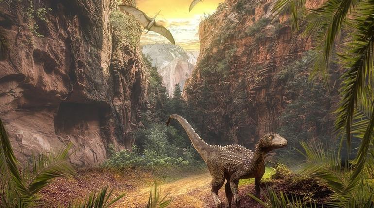 В Новой Зеландии обнаружен живой динозавр