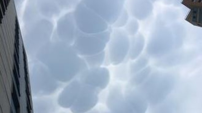Грозы принесли в Петербург облака-мамматусы