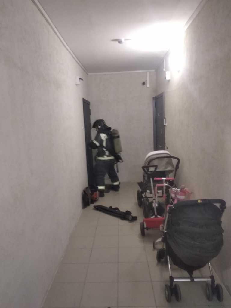 В Петербурге за ночь сгорели три квартиры