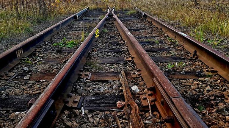 В Рязанской области нашли труп на железнодорожных путях