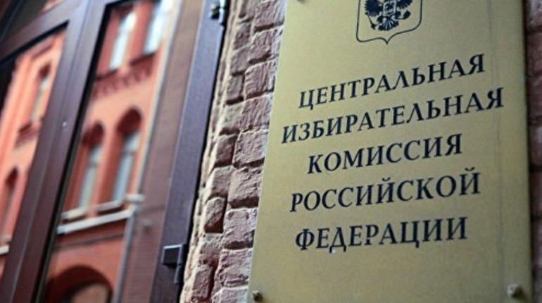«Яблоко» пожаловалось в ЦИК и Генпрокуратуру на избиркомы в Петербурге