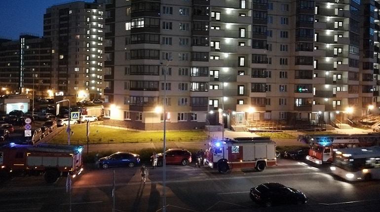 Пожар в Кудрово. Фото: группа