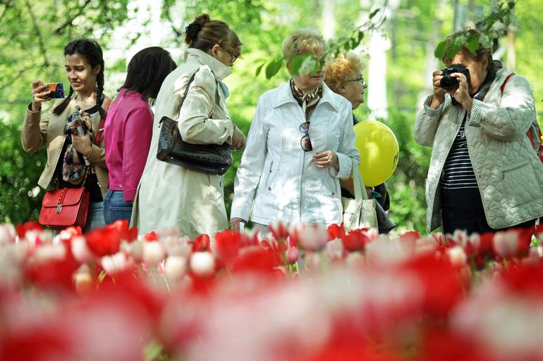 Викторина интернет-газеты «Мойка78»: сколько цветочков посадят в Петербурге