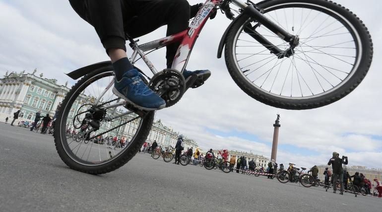 Ранее судимый злоумышленник отобрал у петербуржца велосипед: его отпустили под подписку о невыезде