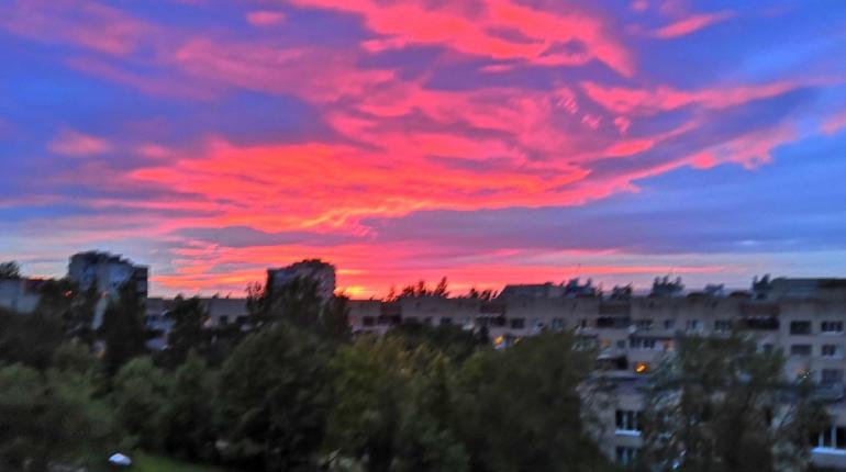 Петербуржцы поделились фотографиями заката