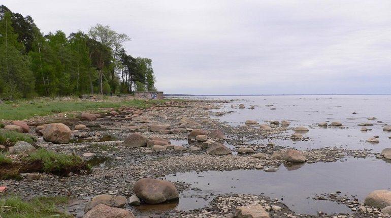 Санкт-Петербург подал проект «Северное побережье Невской губы» на конкурс