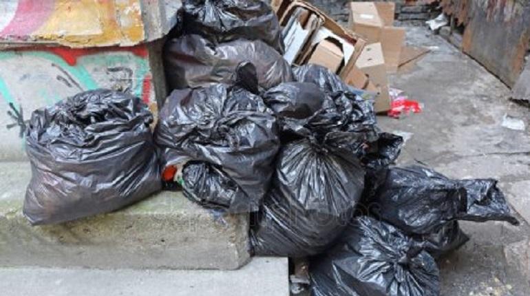 Власти Петербурга прокомментировали жалобы жителей Варшавской улицы на мусорную свалку